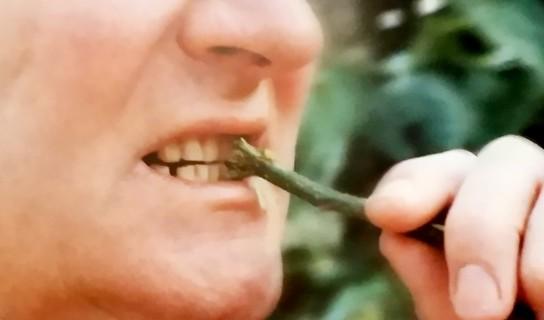 Διατηρώντας τα δόντια καθαρα μειώνεται ο κίνδυνος σοβαρών στομαχικών διαταραχών.